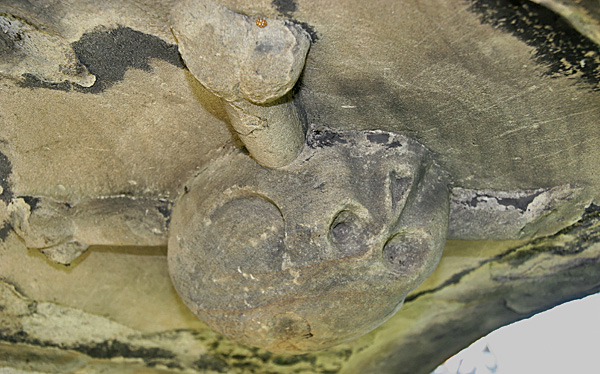 Scull and crossbones on underside of canopy on 17th century Jacobean tombs in Churchyard, Dyserth