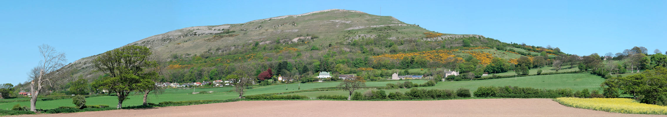 Panorama from Waen Road, near Hottia Farm, across Moel Hiraddug, Dyserth